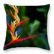 Heliconia -parrot's Beak I Throw Pillow