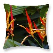 Heliconia Psitacorum Throw Pillow