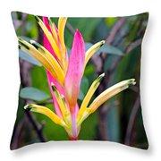 Heliconia Psittacorum Throw Pillow