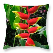 Heliconia Rostrata 2 - A Blooming Heliconia Rostrata Flower Throw Pillow