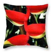 Heliconia Rostrata Throw Pillow