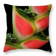 Heliconia Wagneriana - Giant Lobster Claw Heliconiaceae - Maui Hawaii Throw Pillow