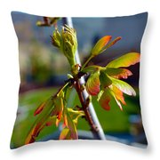 Helicopter Seeds Throw Pillow