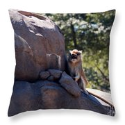 He'll Never See It Coming Throw Pillow