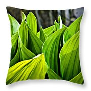 Hellebore And Aspens Throw Pillow