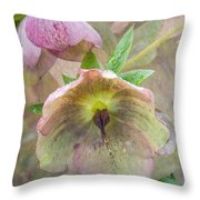 Hellebore Flower Throw Pillow