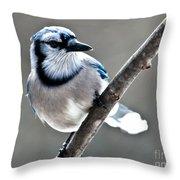 Hello Blue Throw Pillow