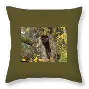 Hello Is There Anybody Out There? Throw Pillow