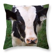 Hello My Name Is Cow Throw Pillow
