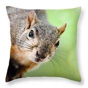 Hello Squirrel Throw Pillow