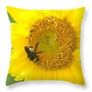 Hello Sunflower Throw Pillow