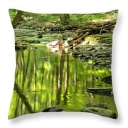 Hells Run Reflections Throw Pillow by Adam Jewell