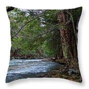 Hemlock Creek Edge Throw Pillow