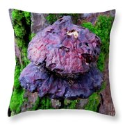 Hemlock Reishi Throw Pillow
