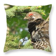 Hen In A Spruce Tree Throw Pillow