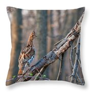 Hen Ruffed Grouse On Roost Throw Pillow
