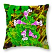 Henbit At Chickasaw Village Site At Mile 262 Of Natchez Trace Parkway-mississippi Throw Pillow