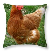 Henny Penny Throw Pillow