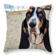 Henry The Basset Throw Pillow