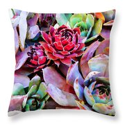 Hens And Chicks Series - Copper Tarnish  Throw Pillow