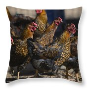 Hens Of Distinction Throw Pillow
