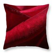Her Crimson Robe Throw Pillow