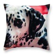 Her Eyes. Portrait Of Dalmation Dog. Kokkie Throw Pillow