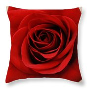Her Majesty All Profits Benefit Hospice Of The Calumet Area  Throw Pillow