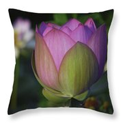 Her Majesty Throw Pillow by Cindy Lark Hartman