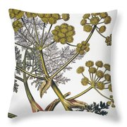 Herbal: Fennel, 1819 Throw Pillow