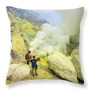 Herbivorous Throw Pillow