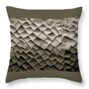 Herculaneum Wall Throw Pillow