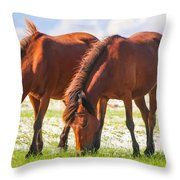 Herd 32 Throw Pillow