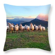 Herd Of Sheep In The Sunset Throw Pillow