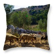 Herd Of Sheep In Tuscany Throw Pillow