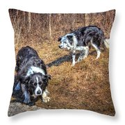 Herder And Herded Throw Pillow