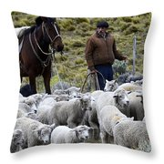 Herding Sheep Patagonia 3 Throw Pillow