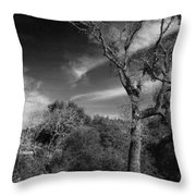 Here As I Stand Throw Pillow by Laurie Search