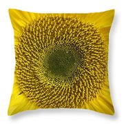 Here Comes The Sun.... Throw Pillow