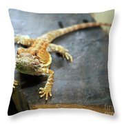 Here Lizard Lizard Throw Pillow
