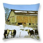Hereford Barn Painting Throw Pillow