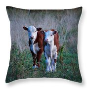 Herefords Throw Pillow