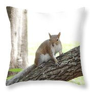 Here's Lookin At You Kid Throw Pillow