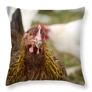 Heritage Ameraucana Throw Pillow