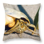 Hermit Crab Clibanarius Vittatus Throw Pillow