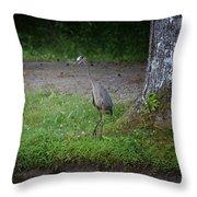 Heron 14-4 Throw Pillow