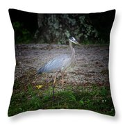 Heron 14-6 Throw Pillow