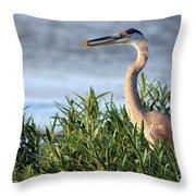 Heron And Crayfish 2029 Throw Pillow