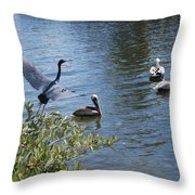 Heron And Pelicans Throw Pillow