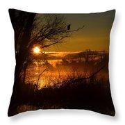 Heron At Sunrise Throw Pillow